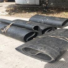环形钢丝带给煤机环形皮带图片