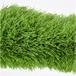 五人制足球场人造草坪标准,专用草长50mm型,单丝草皮加筋类,各类球场草坪