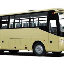 客车(椒江到泸州汽车)长途客车多久到达-直达大巴车图片