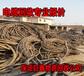 容城电线电缆回收-桃李争妍-容城废旧电缆回收