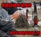 武山电线电缆回收-独辟蹊径-武山废旧电缆回收
