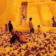 海洋球乐园出租百万海洋球租赁各种儿童乐园设备出租