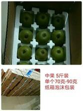蒲江红心猕猴桃,价格实惠,吃货首选