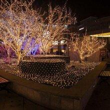 勒是雾都专业灯光节出租出售圣诞树出售出租展览