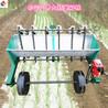 菏泽热卖大蒜播种机四轮车带蒜头播种机种蒜机器独蒜种植机