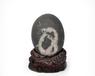 天然奇石拍卖纪录和价格天然奇石哪里快速出手天然奇石私下交易