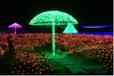 上海灯光节出租出售出租传统文化特色灯光节出租灯光节
