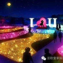 安徽灯光节文化活动攻略灯光节出售灯光节出售厂家