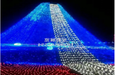 武汉做一次国际浪漫灯光节出售灯光节出租灯光节策划
