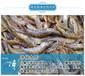 鱼塘水肥怎样调节稳水达到净化水体?对虾养殖户养虾先养水,那如何养水呢