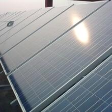 回收内蒙古地区太阳能光伏组件