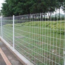 双边丝护栏网框架护栏网三角折弯护栏网护栏网生产厂家