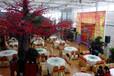 生态餐厅建设厂家,生态餐厅智能温室厂家,山东生态餐厅造价
