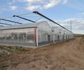山西PC阳光板无土栽培温室大棚建设厂家