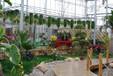 花卉展销大厅温室大棚工程建设厂家就在山东鲁源公司