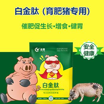 猪催肥饲料添加剂猪吃什么长得快白金肽效果怎么样