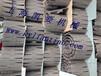 中国移动塑料链板