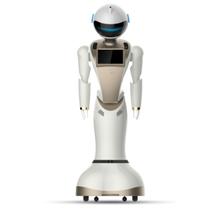 武汉政府智能机器人公司