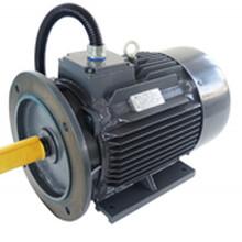 诸暨和创空压机配套永磁同步电机11kwHCTYP132M-30