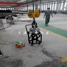 吉林无线电子吊秤重型机械厂用带打印功能图片