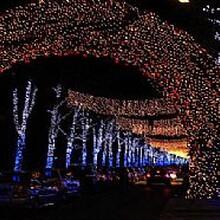 2016灯光展出租风靡全球2017梦幻灯光节出租走向市场