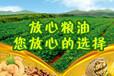 新疆新粮粮油:9.25粮油行情分析