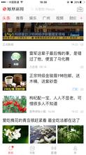 金骏眉老班章茶叶怎么在凤凰新闻app做广告