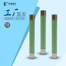 厂家直销高压熔断器XRNP1-12/0.5A10KV高压熔管高压限流熔断器图片