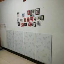 墙暖板电暖气片碳晶板批发