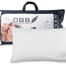 德国OBBNorthernGoose系列三维枕头白鹅绒羽绒枕头床上用品