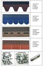 塔城沥青瓦各种形状的建筑优游注册平台纤瓦图片