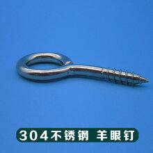 不銹鋼羊眼自攻釘東莞廠家供應優質不銹鋼羊眼螺釘圖片