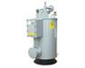 香港中邦CPEX-200kg/hCPEX-300kg电热式气化器