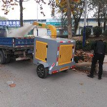 济南百易牵引式树叶收集器BY-T3环卫园林公园吸叶机树叶收集设备