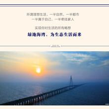 售楼处杭州湾绿地集团打造