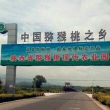 陕西眉县猕猴桃红心红阳绿心徐香果农自销一件包邮