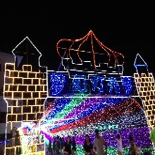 灯光节灯光展出售出租led造型灯出售出租