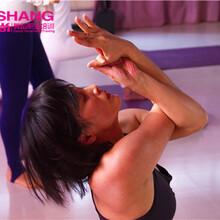 瑜伽专业培训/瑜伽健身/瑜伽私教/瑜伽教练班/昆明缔尚舞蹈