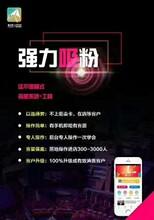 浙江省扫码拓客平台怎样快速增加客源