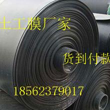 濮阳hdpe膜厂家&价格电话0.75mm欢迎询价图片