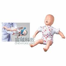 婴儿气道梗塞及CPR心肺复苏模型