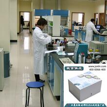 tTGIgA酶免检测ELISA试剂盒高灵敏重复特异性图片