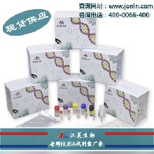 I型胶原蛋白ColⅠ试剂盒(种属:全)操作说明书图片