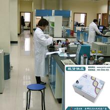 脑源性神经生长因子检测试剂盒(种属:齐全)科研专用图片