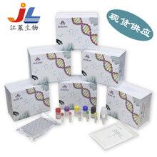 芳香族L-氨基酸脫羧酶酶聯免疫檢測試劑盒現貨直發圖片
