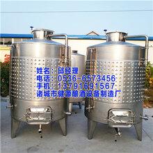 桑葚酒发酵罐果酒发酵桶