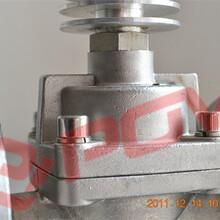 高温电磁阀不锈钢304材质有法兰连接出口阀门