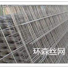 廠家直銷電焊網片抹墻電焊網包塑電焊網不銹鋼電焊網