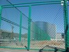 镀锌勾花网-铁丝网-体育场围网-动物园围网-包树头围网-编织铁网