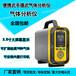 普利通PLT-600-PH3手提泵吸式磷化氢浓度气体检测分析仪记录仪